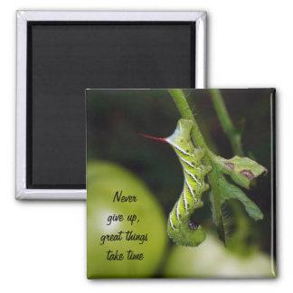 Never Give Up Caterpillar Magnet
