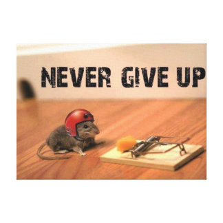 Never Give Up Encouraging Mouse Canvas