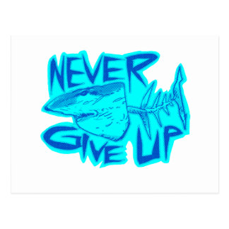 never give up great white shark postcard