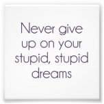 Never Give Up On Your Stupid Dreams