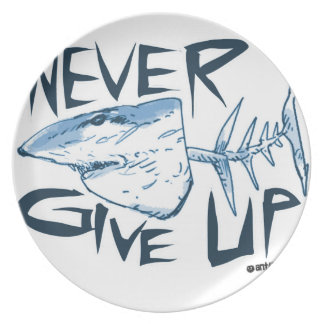 never give up plate