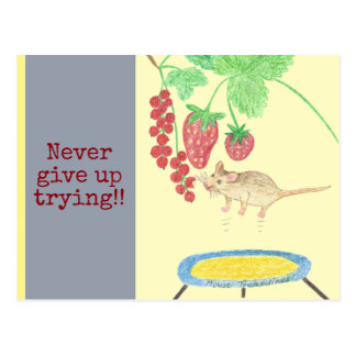 Never give up trying! The mouse on the trampoline Postcard