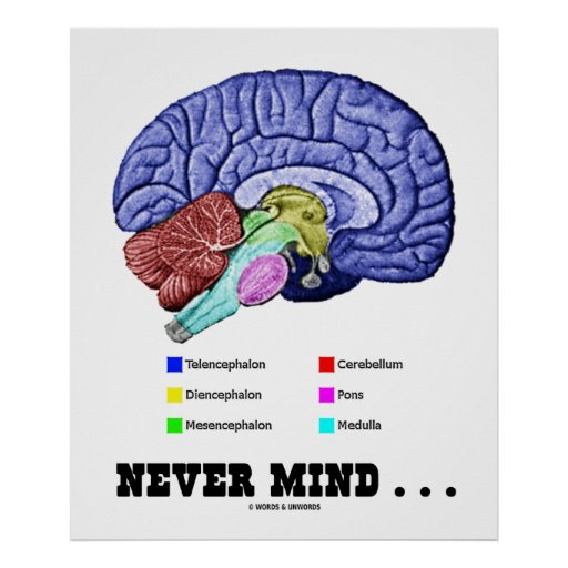 Never Mind . . . (Brain Anatomy Psyche Humor) Poster