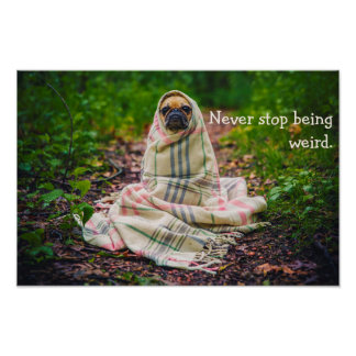 Never Stop Being Weird Pug in Blanket Poster