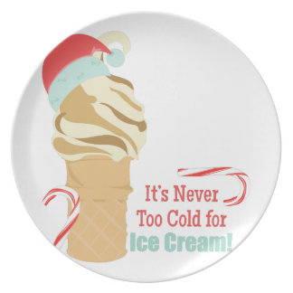 Never Too Cold Dinner Plate