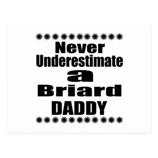 Never Underestimate Briard  Daddy Postcard