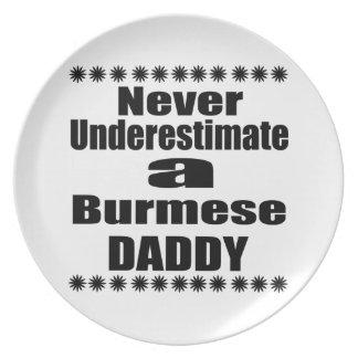 Never Underestimate Burmese Daddy Plate