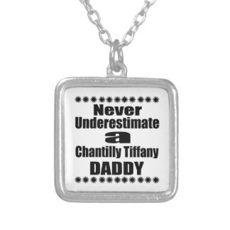 Never Underestimate Chantilly Tiffany Daddy Silver Plated Necklace