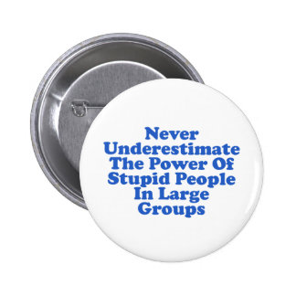 Never Underestimate Stupid People Funny Quote Pinback Button