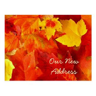 New Address Autumn Postcard
