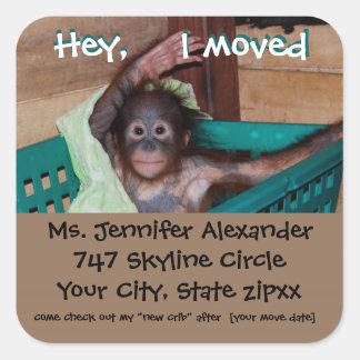 New Address Monkey BUsiness Square Sticker
