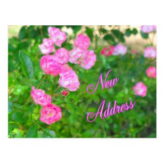New Address Postcard