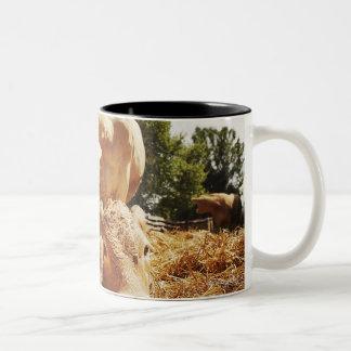 New born calf and mom Two-Tone coffee mug