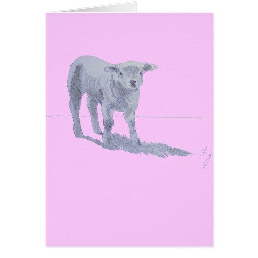 New born lamb pencil sketch greeting cards