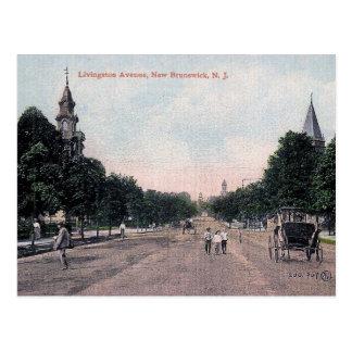 New Brunswick, New Jersey, Vintage Postcard