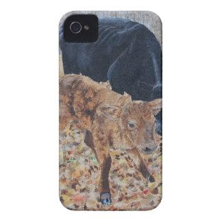 New Calf Case-Mate iPhone 4 Cases
