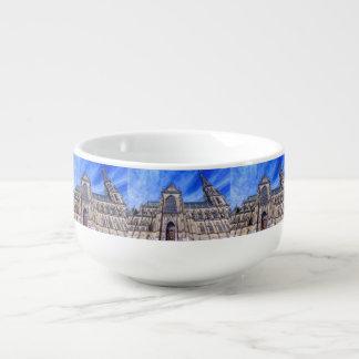 New Cathedral, Linz, Austria Soup Mug