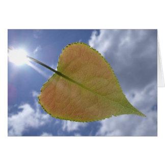 New Cottonwood Leaf Card