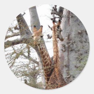 new cute nursery twin giraffe Destiny Destiny'S Classic Round Sticker