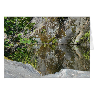 New Day Gardens Notecard- Reflecting Pool Card