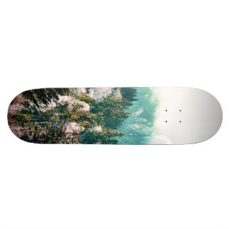 New Days Skate Boards