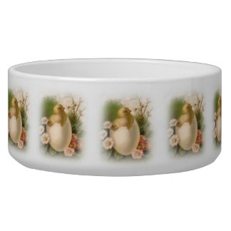 New Easter Chick Dog Food Bowls