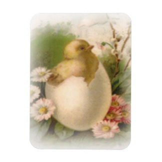 New Easter Chick Rectangular Photo Magnet