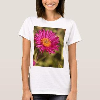New England aster (Symphyotrichum novae angliae) T-Shirt