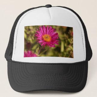 New England aster (Symphyotrichum novae angliae) Trucker Hat