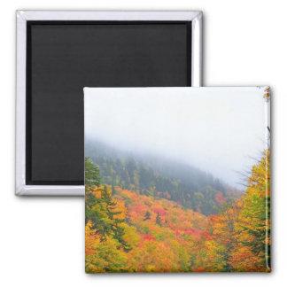 New England Autumn 068 Magnet