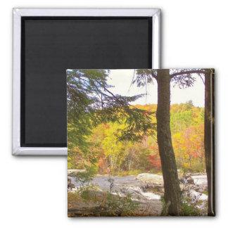 New England Autumn 127 Magnet