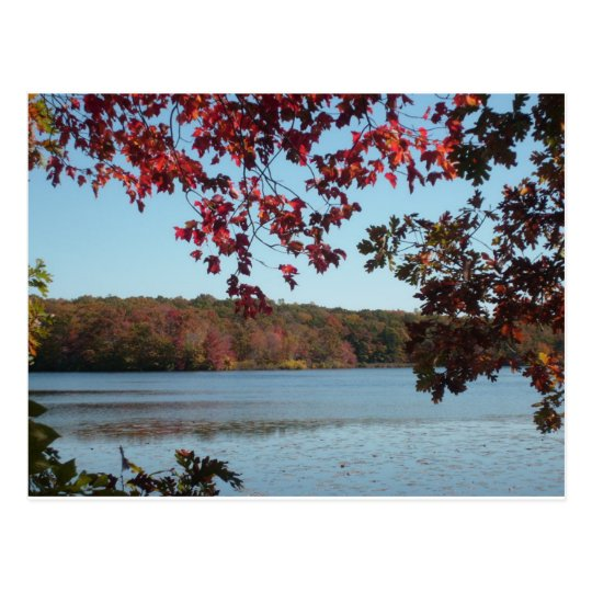 New England autumn lake Postcard