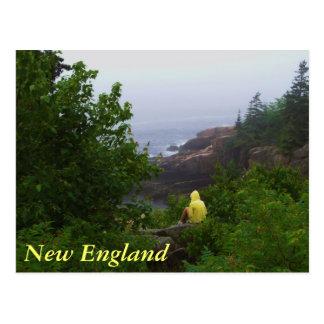 New England Dreamer Postcard