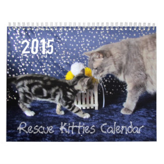 ** - NEW for 2015! ** 2015 Rescue Kitty Calendar