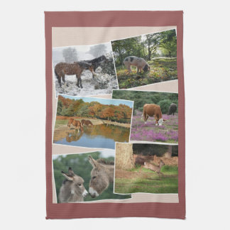 New Forest teatowel Towels