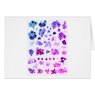 New greeting in Shop : Herbarium purple art Card