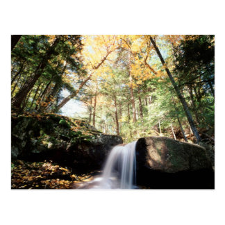 New Hampshire, A waterfall in the White Postcard
