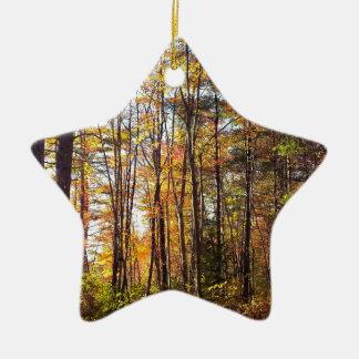 New Hampshire Autumn Forest Ceramic Ornament