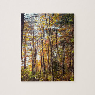 New Hampshire Autumn Forest Jigsaw Puzzle
