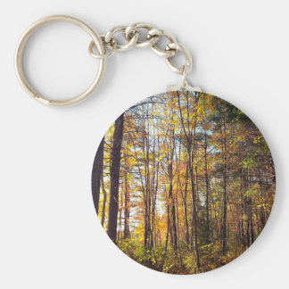 New Hampshire Autumn Forest Keychain