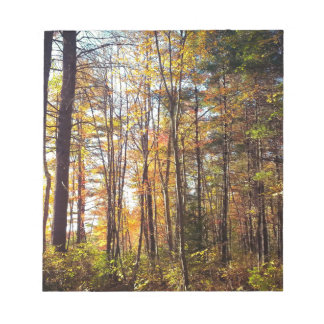 New Hampshire Autumn Forest Notepad