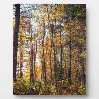 New Hampshire Autumn Forest Plaque