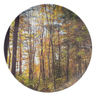 New Hampshire Autumn Forest Plate
