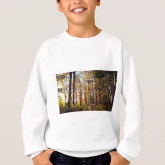 New Hampshire Autumn Forest Sweatshirt
