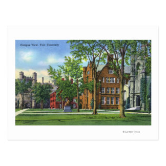 New Haven, CTYale University Campus View Postcard