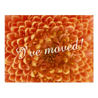 New home moving postcards | close up flower photo
