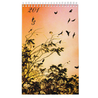 new hopes wall calendars