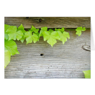 New ivy, old wood card