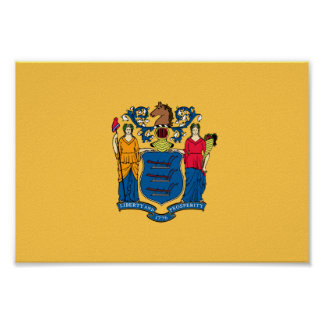 New Jersey Flag Poster