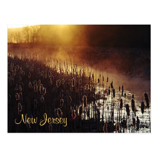 New Jersey Postcard - Black River, Chester